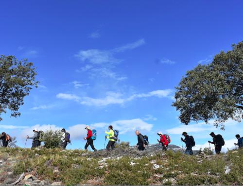 ¡Haz senderismo¡ … por tu salud. Cuatro experiencias internacionales