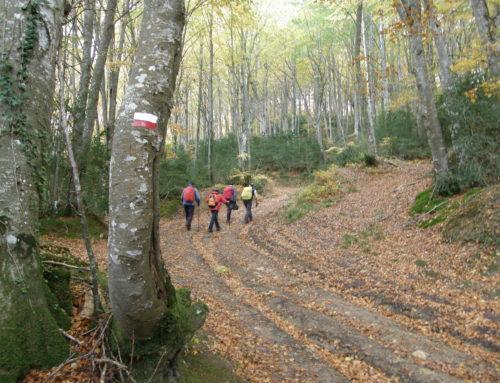 Principios generales para la señalización de rutas de senderismo de la European Ramblers Association